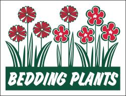 Bedding Plants (Item# P26PLTBED)