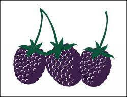 Blackberries (Item# P26BKB)