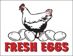Fresh Eggs (Item# P26EGG)