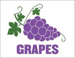 Grapes (P26GRAPES)